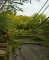 Consecuencias de la tormenta.png