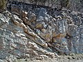 Copper Creek Thrust Fault (Thorn Hill section, northeastern Tennessee, USA) 15.jpg