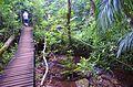 Costa Rica - MS, Brazil - panoramio (20).jpg
