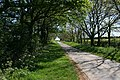 Country road near Lound - geograph.org.uk - 420129.jpg