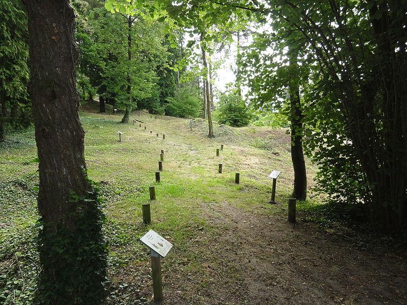 Craonne (Aisne) Vieux Craonne, arboretum
