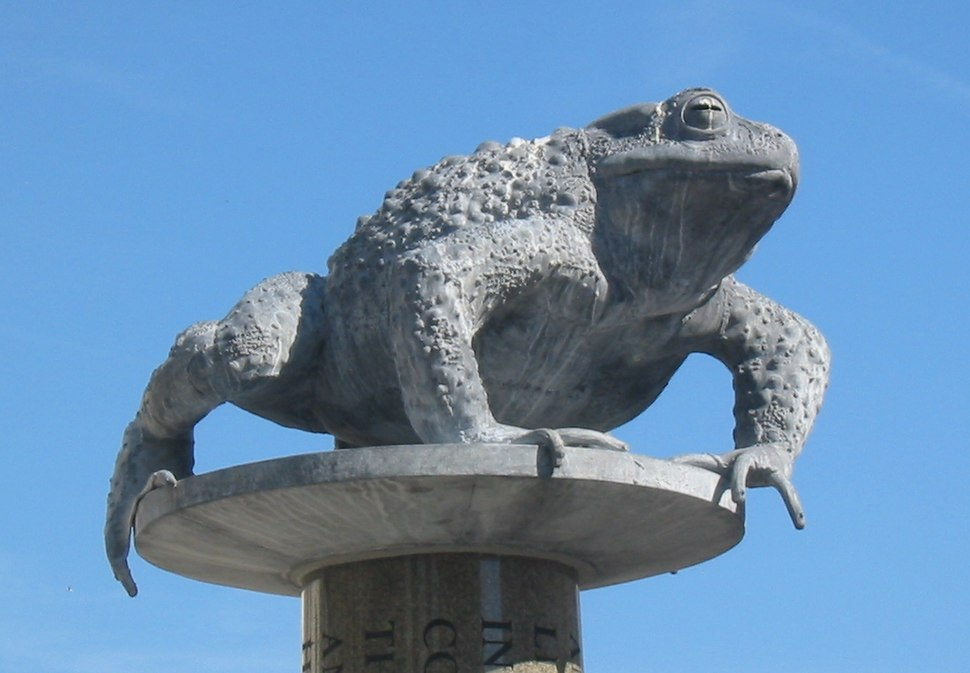 Crapaud St Helier Jersey