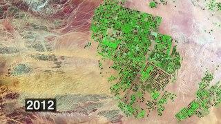 Environmental impact of irrigation