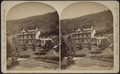 Crown Hill Cottage, at our home, Dansville, N.Y, from Robert N. Dennis collection of stereoscopic views.png