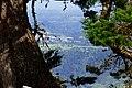 Cruce de Cordillera Central - Vista desde Salento arriba hacia occidente (14725108691).jpg