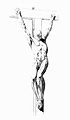Crucified ecorche, Jacques Gamelin Wellcome L0020560.jpg