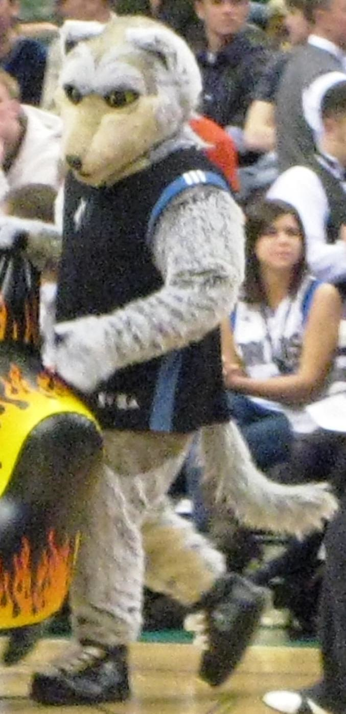 Crunch the Wolf at Target Center
