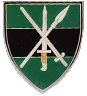Rand Light Infantry - Image: Current SANDF Infantry flash