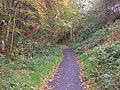 Cycle Trail to Whitby - geograph.org.uk - 1547101.jpg