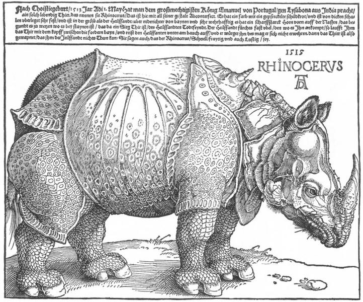 Εικόνα:Dürer rhino full.png