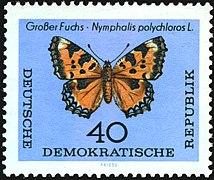 DDR-1964-001.jpg