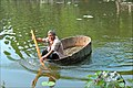 Dans le jardin de lotus de Liu Yong à Nanxun (Chine) (40114639791).jpg