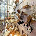 Das Riff-Museum im Bahnhof Gerstetten. 08.jpg