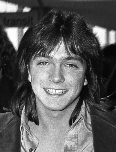 David Cassidy, American actor and musician (1950–2017)