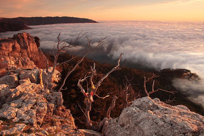 Archivo:Dawn on cloud nine.jpg
