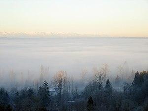 December Fog 01 edit.JPG