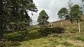 Deer Fence (An Sgòr Dubh) on Mar Lodge Estate (29JUL17) (1).jpg