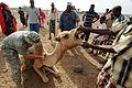 Defense.gov News Photo 071212-N-3931M-068.jpg