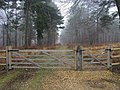 Denny Inclosure - geograph.org.uk - 1638358.jpg