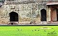 Dewan-e Khaas.jpg