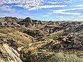Dinosaur Provincial Park, Alberta.jpg