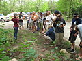 Discussing invasive plants on the bank of the French Broad (5332800755).jpg