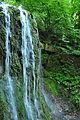 Dnister-kanyon-Vozyliv-vodospady-14069389.jpg