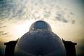 Douglas F3D-2 Skyknight - Flickr - p a h.jpg