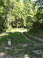 Doulaincourt, pierre commémorative D67A (02) et chemin forestier.jpg