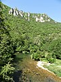 Dourbie La Roque-Sainte-Marguerite Fournets aval.jpg