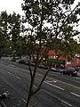Downtown San Jose, California 2 2017-08-01.jpg