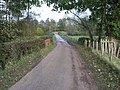 Driveway from Finchcocks House - geograph.org.uk - 75357.jpg