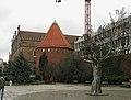 Drzewo Millennium Gdańsk 2.jpg