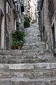 Dubrovnik - Flickr - jns001 (81).jpg