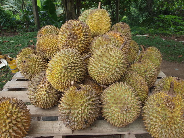 Durian via Wikipedia ( https://en.wikipedia.org/wiki/Durian )