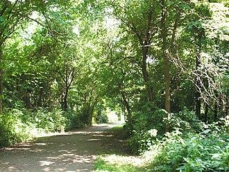 Dyke Marsh - Walking path in the Preserve