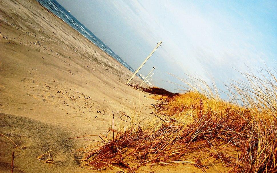 Dynamic shores Klaipeda