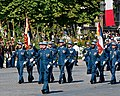 EMIA-EMCTA flag guards Bastille Day 2008.jpg