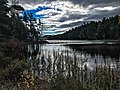Eagle Lake area (a912079c-189c-46f2-9e8a-6b93ce5e4a59).jpg