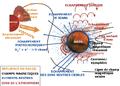 Echappement-atmosphérique-Mars.png