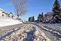 Edmonton Winter (4217140517).jpg