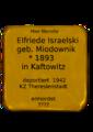 Elfriede Israelski.png