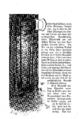 Elisabeth Werner, Vineta (1877), page - 0030.png