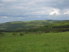 Ellenbogen (Rhön).JPG