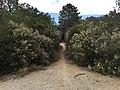 Entrada Ruta NAYL - panoramio.jpg