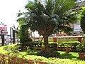 Entrance of Panchayat Office, Alibag - panoramio.jpg