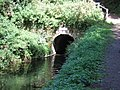 Entrance to Waytown Tunnel - geograph.org.uk - 228345.jpg