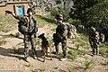 Equipe cynophile en Afghanistan.jpg
