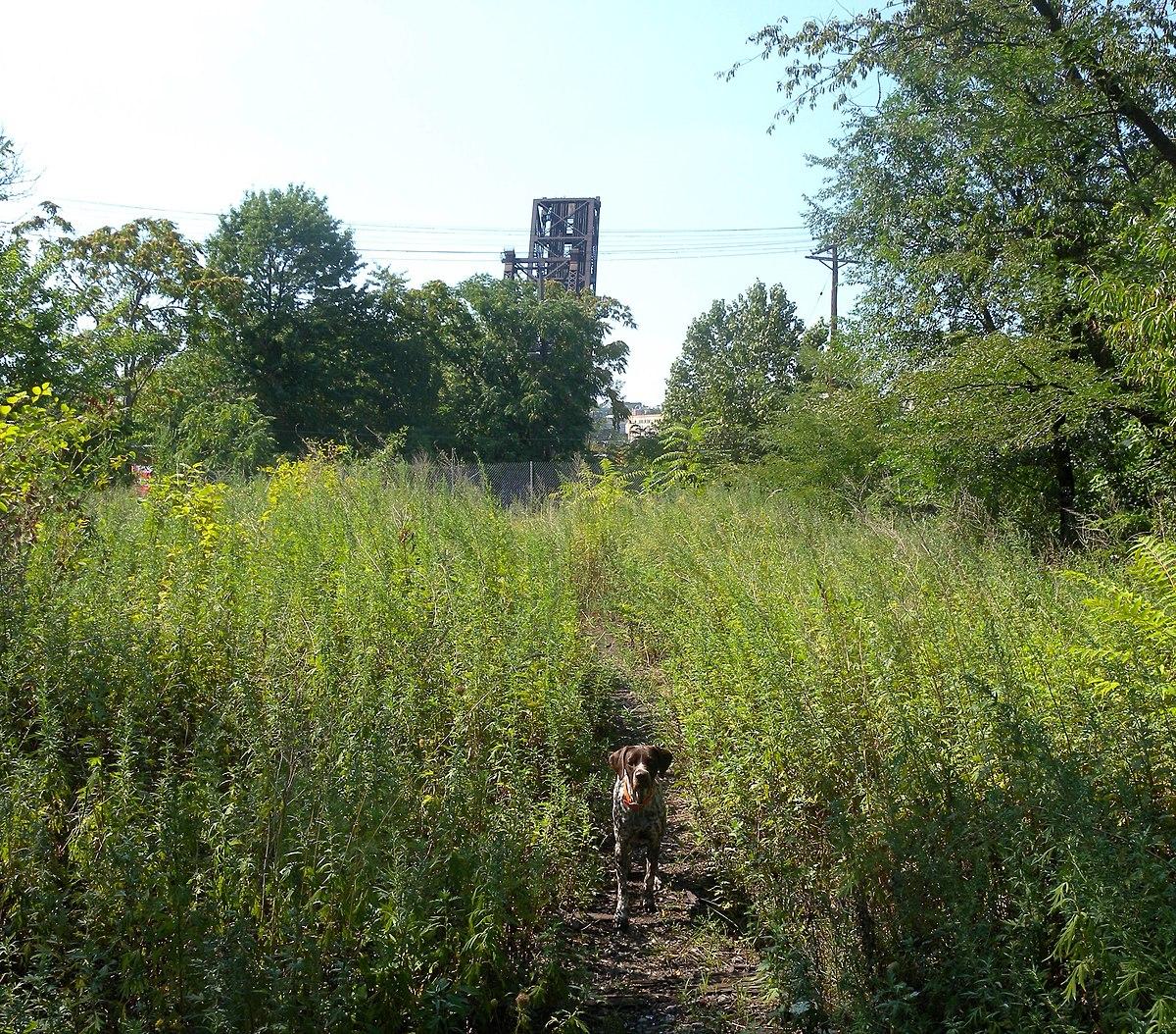 East Newark New Jersey Wikipedia - Us zip code newark