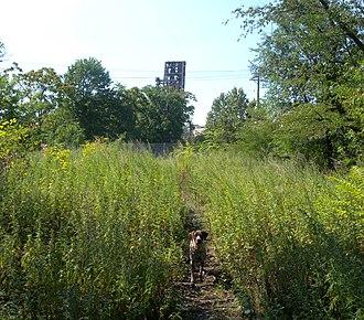 East Newark, New Jersey - Erie-Lackawanna embankment